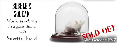 Bubble and Squeak - Mouse Taxidermy in a glass dome